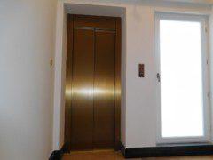 achetní dveře v barvě mosaz struktura